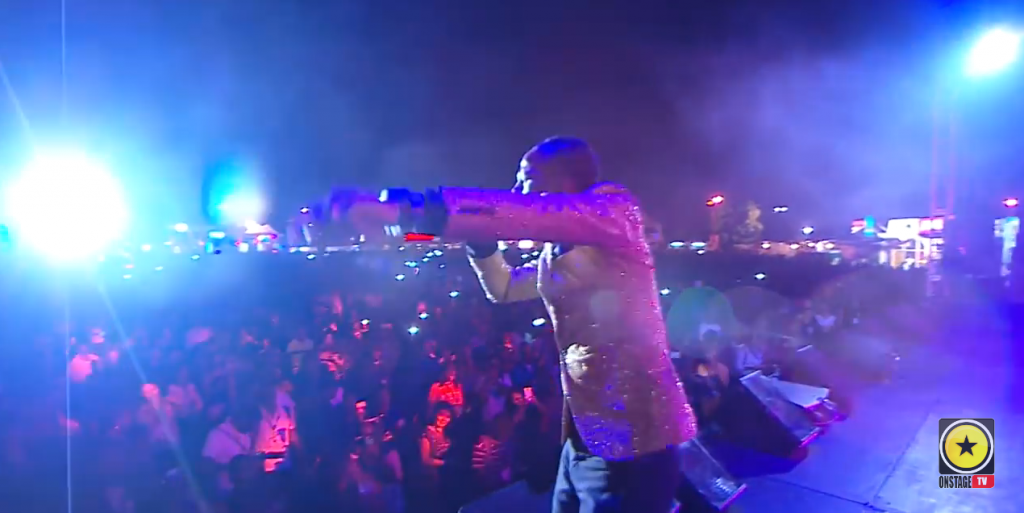 sumfest 2015 - on stage full show review with winford williams
