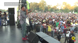 bugle, assasin & more at irie jam 22nd anniversary